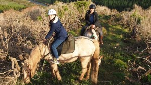 Coastal Views Horse Rides, Wainuiomata, Wellington.