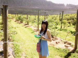 Bluebank Blueberry and Emu Farm