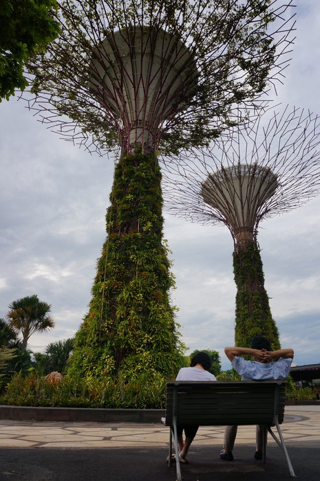 01_Gardens by the Bay