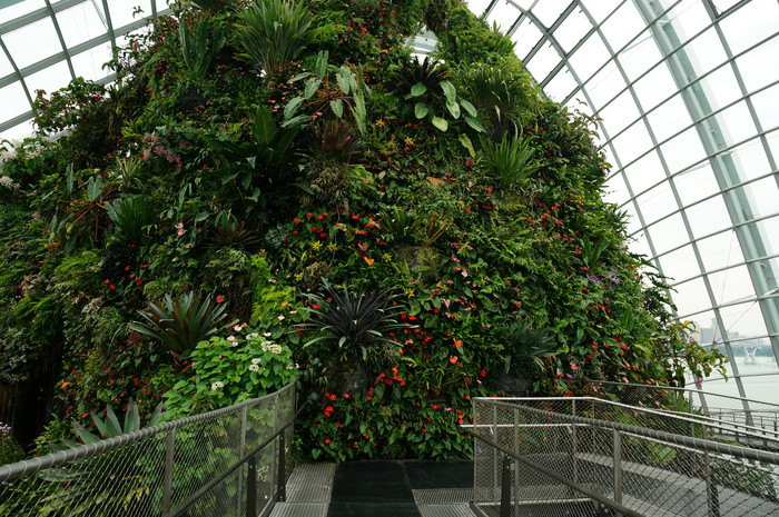 03_Gardens by the Bay