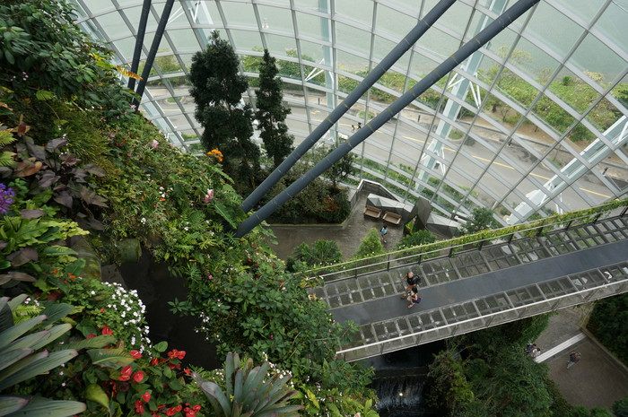 04_Gardens by the Bay