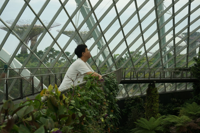 05_Gardens by the Bay