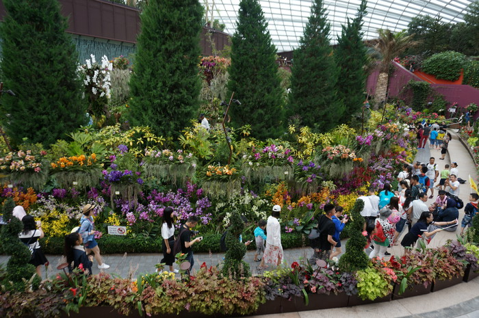 12_Gardens by the Bay