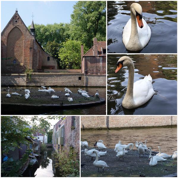 b03_Brugge